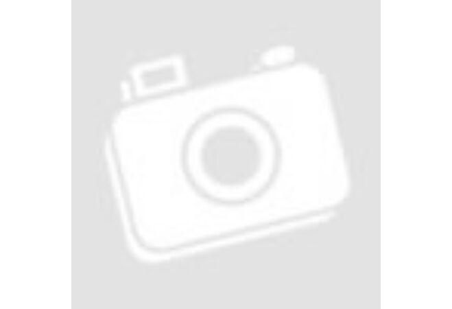 Napelemes inox kerti lámpa szuper fényes LED-del (10 darabos csomag)